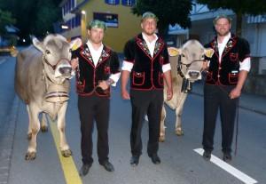Melk Britschgi, Markus Niederberger, Stefan Gasser